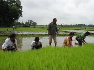 Bhuiyanpur pic-1--15-08-2013