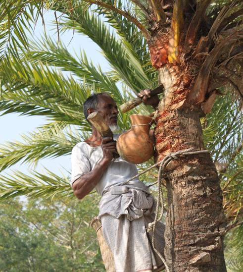 হেমন্ত বিলাস