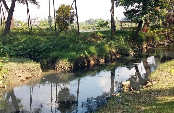 মধুপুরের কৃষি জমির মাটি যাচ্ছে  সিরামিক কারখানায়ঃ এলাকার  জীব বৈচিত্র্য ও পরিবেশ হুমকির মুখে