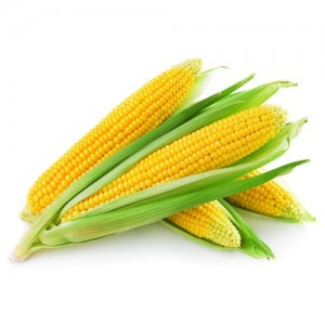 buy-corn-makai-online-kolkata-kolkart-com-500x500