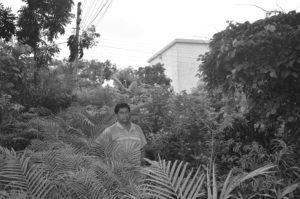 নার্সারী করে সফল দিনাজপুরের আব্দুর রহিম