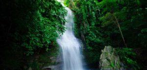 সৃষ্টিকূলের জন্য পানি সরবরাহ ও বিতরণে আল্লাহর ব্যবস্থা